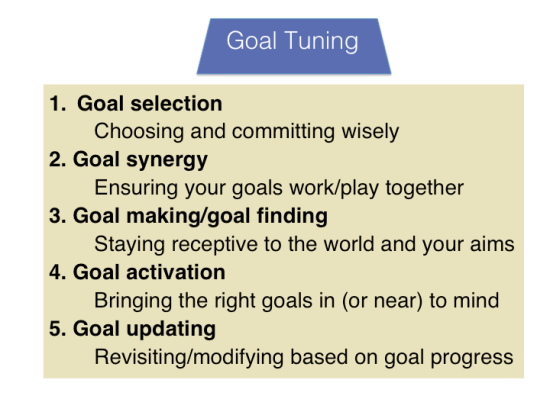 The Five Interrelated Components of Goal Tuning